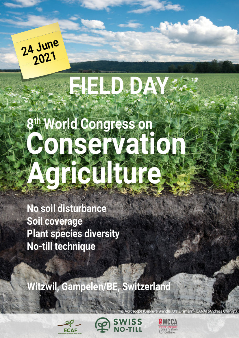 SaveTheDate_FIELD DAY_8WCCA_20210624